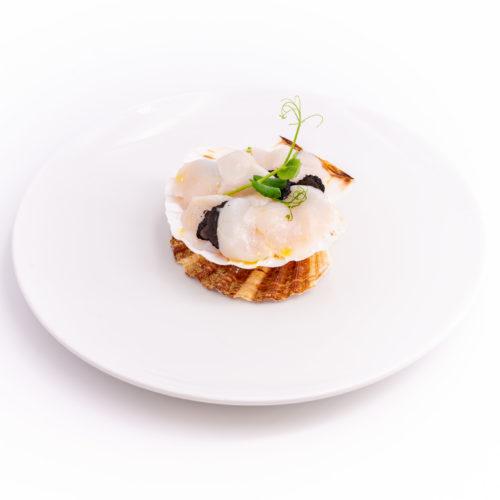 Saint-Jacques glacées en coquille et mascarpone aux truffes