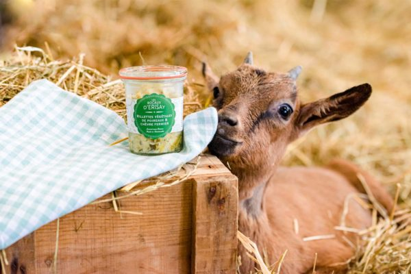 Rillettes végétales de poireaux et chèvre fermier